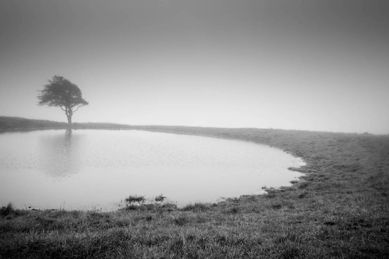 Frankie_mcAllister_south-downs-1